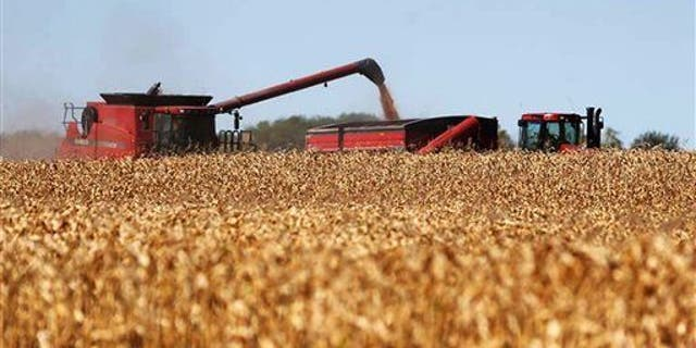 Michigan hunter, 14, dies after being run over by corn harvester: reports 5
