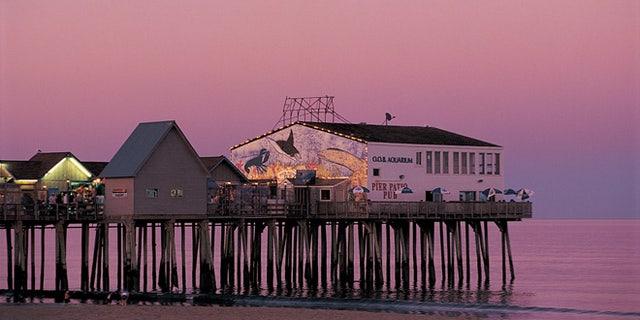 14591 purple pier