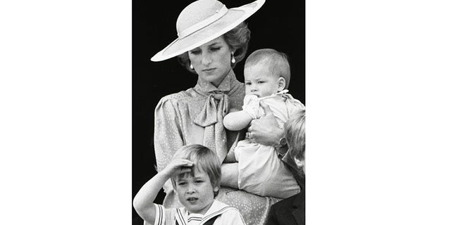 Princess Diana's friend Marie Sutton said the royal would have done anything for her sons, Prince William (bottom) and Prince Harry.