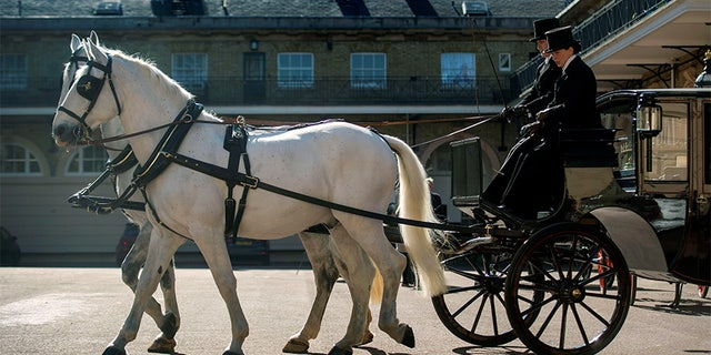 Two Windsor Greys, which will pull the carriage at the wedding of Prince Harry and Meghan Markle, at the Royal Mews at Buckingham Palace, London. Picture taken May 1, 2018.