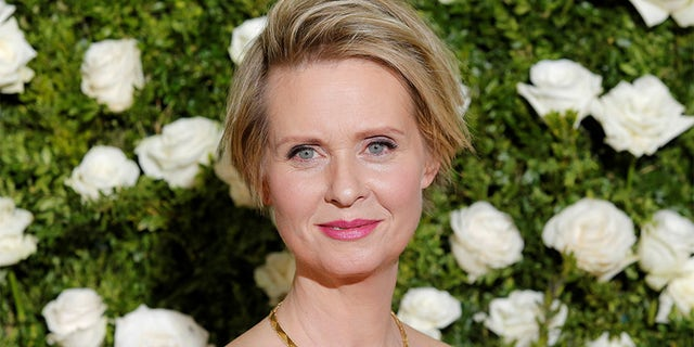Actress Cynthia Nixon penned an op-ed criticizing the candidacy of Michael Bloomberg.