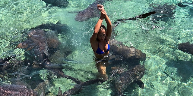 She was able to rip the shark off her arm and stop the bleeding long enough to get out of the water.