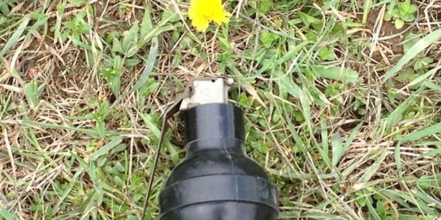 Skunk grenade.