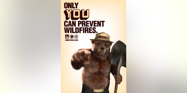 Smokey Bear is pictured in a 2011 US Forest Service poster in this undated handout photo obtained by Reuters August 8, 2014.