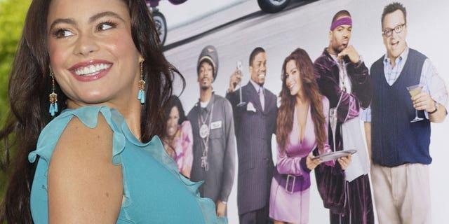 'Modern Family' star Sofia Vergara works the red carpet. (Reuters)