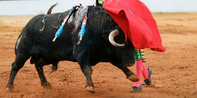 Westlake Legal Group Spain-Bullfighters First bullfight in 2 years to take place in Majorca after Spanish court overturns ban Melissa Leon fox-news/world/world-regions/spain fox-news/world/world-regions/europe fox-news/sports fox news fnc/world fnc ed3faf5f-0706-5f61-a8b6-b24016b784ce article