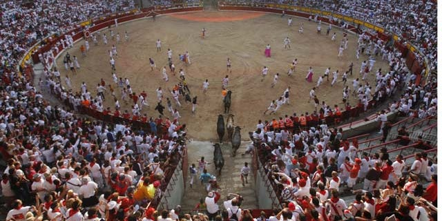 """July 14, 2013: Runners arriving to the bull ring with """"Miura"""" fighting bulls during the eighth and last running of the bulls at the San Fermin festival, in Pamplona, Spain. (AP Photo/Alvaro Barrientos)"""