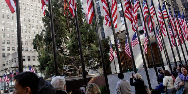 The 80th Rockefeller Center Christmas Tree was raised in New York's Rockefeller Center in 2012. The 80-foot Norway spruce, donated by Joseph Balku of Flanders, N.J., was strung with 30,000 multi-colored LEDs on 5 miles of wire, and topped with a Swarovski Crystal Star.