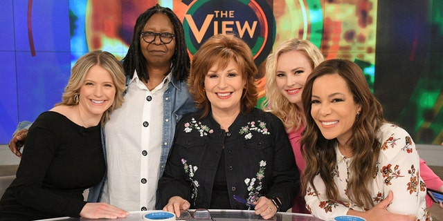 """""""The View"""" has made headlines with constant infighting between Joy Behar and the show's lone conservative, Meghan McCain."""