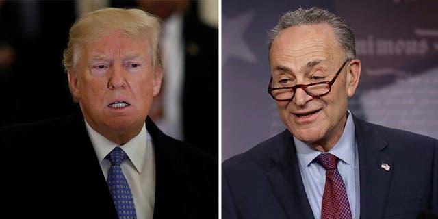 President Trump blamed Senate Democratic Leader Chuck Schumer, D-N.Y., for obstructing U.S. ambassadorships. (File)