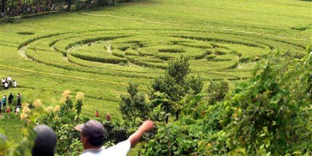 A 2011 photo of a crop circle that generated headlines in Sleman, Indonesia.