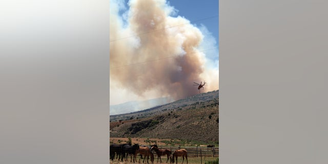 June 27- A helicopter carrying a bucket of water heads toward the Wood Hollow Fire in central Utah.