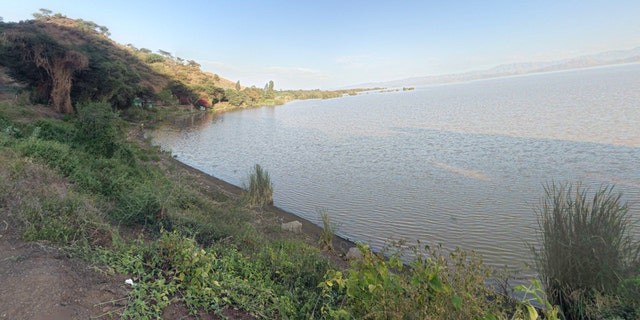 Abaya Lake is located in southern Ethiopia and is reported to have a large crocodile population.