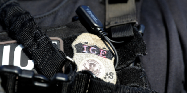 Amid calls for its disbandment, 19 ICE investigators penned a letter to Homeland Security Secretary Kirstjen Nielsen.