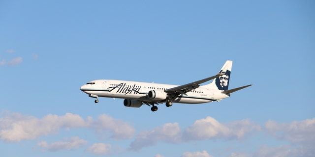 Relatives of 75-year-old Bernice Kekona allege that Alaska Airlines and a contractor at the Portland International Airport are responsible for Kekona's accident.