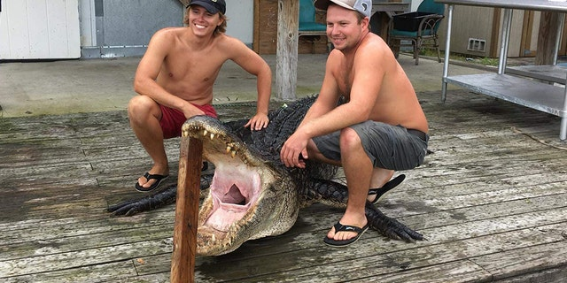 The two fought with the gator for 30 minutes.