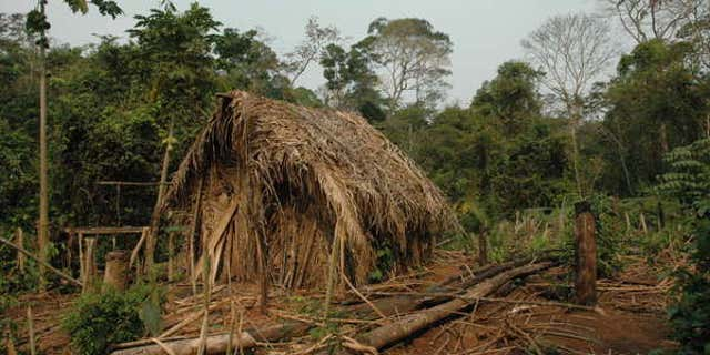 File photo - The man's house and a garden where he grows vegetables. (Survival International)