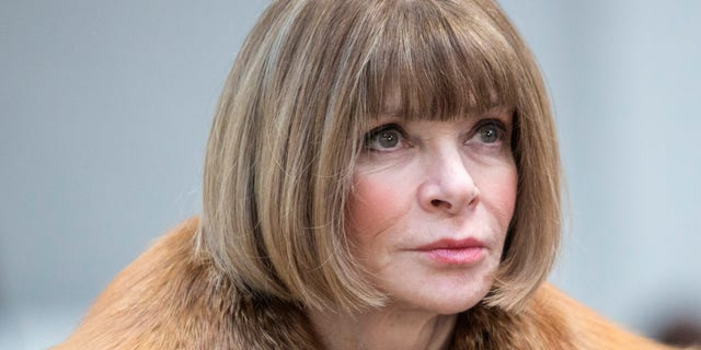 Anna Wintour revealed on Monday that the Met Gala has been postponed.