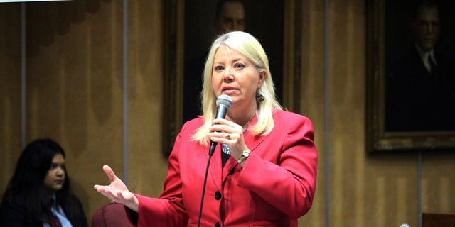 Debbie Lesko served as a state senator and representative for nearly 10 years total.