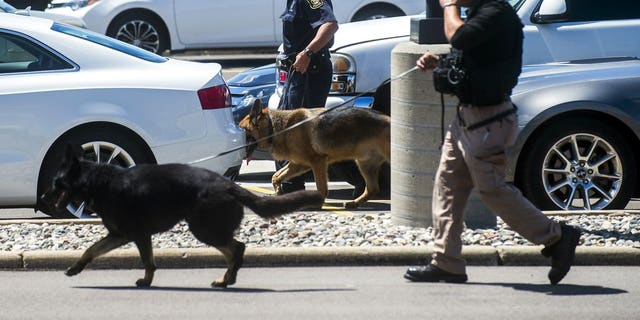Police dogs search cars in a parking lot at Bishop International Airport, Wednesday morning, June 21, 2017, in Flint, Mich.