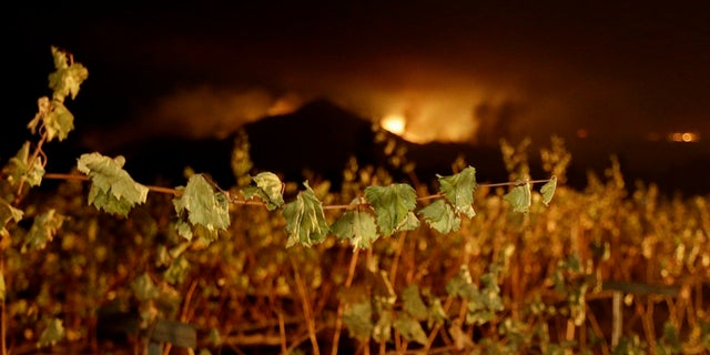 Some of the largest blazes in Northern California were in Napa and Sonoma counties, home to dozens of wineries that attract tourists from around the world