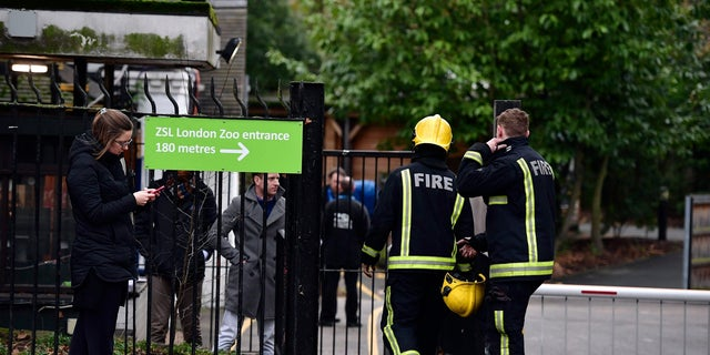 More than 70 firefighters worked to put out the flames at the London Zoo. A few people were treated for smoke inhalation, according to reports.