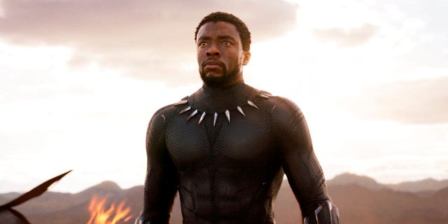 """""""Black Panther"""" has grossed $700 million worldwide, but Tesco said it made """"a mistake"""" and accidentally called its tie-in costumes """"Dark Panther."""""""