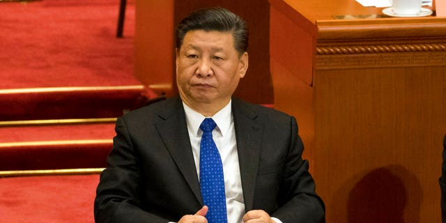 In March last year, in the months leading up Bingbing's takedown, President Xi Jinping granted comprehensive authority to his newly-minted National Supervision Commission to go after suspected tax evaders.