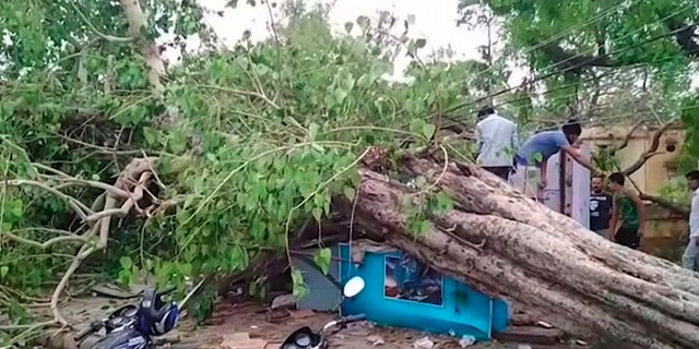 A powerful dust storm and rain swept parts of north and western India overnight, causing house collapses, toppling trees and leaving dozens dead and more than 160 injured, officials said.