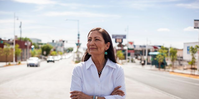 Deb Haaland, a tribal member of Laguna Pueblo, is aiming to become the first Native American woman in Congress.