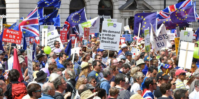 Crowds gather on Pall Mall during the People's Vote march for a second EU referendum in central London