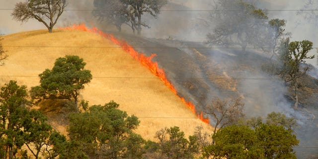 Fire burns the hillsides as the County Fire continues along Highway 129 near Lake Berryessa in Yolo County, California, Tuesday, July 3, 2018.