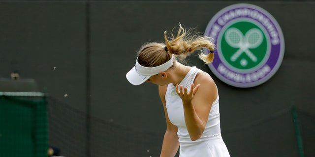 Caroline Wozniacki of Denmark shakes her head to avoid the flying insects on court during the women's singles match against Ekaterina Makarova of Russia on the third day at the Wimbledon Tennis Championships in London.