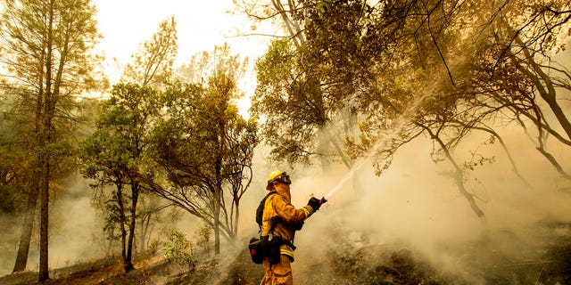Firefighter Scott Brown sprays water on a backfire while battling the Carr Fire in Redding.