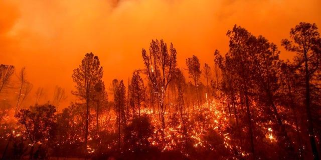 The Carr Fire burns along Highway 299.