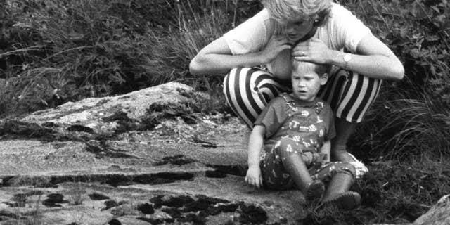 Princess Diana plays with Prince Harry by a stream.