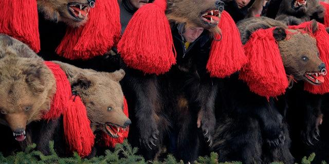 People wearing bear fur costumes dance during the annual bear ritual gathering in Comanesti, Romania.