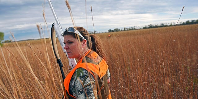 Jen Schaeffer, of Sioux Falls, walks a piece of cover during the South Dakota pheasant hunting opener.