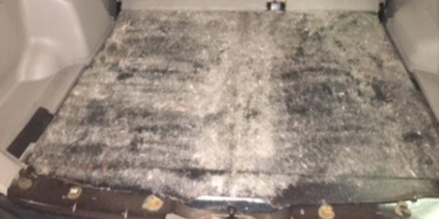 A K-9 unit alerted to the presence of narcotics in the vehicle's cargo area.
