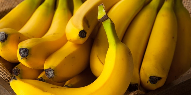 Scientists are concerned about the future of bananas in the world as a disease continues to kill crops worldwide.