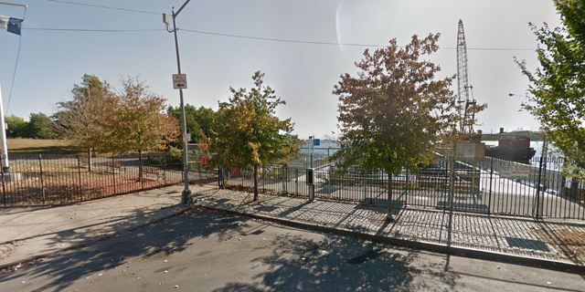 The human remains were found near Tiffany Street and Viele Avenue in Bronx's Barretto Point Park.