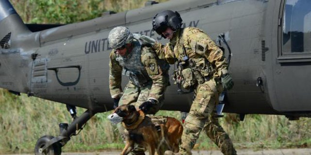 File photo - U.S. Army Sgt. Philip Ventimiglia and his canine assigned to 131st Military Working Dog Detachment Ansbach, Military Working Dog (MWD), conduct hoist training into a UH-60 Black Hawk medical helicopter at Oberdachstetten Local Training Area (LTA), Frankonia, Germany, Aug. 28, 2017. (U.S. Army photo by Charles Rosemond)