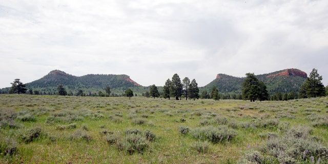 """In this June 22, 2016 file photo, the """"Bears Ears"""" buttes are shown near Blanding, Utah."""