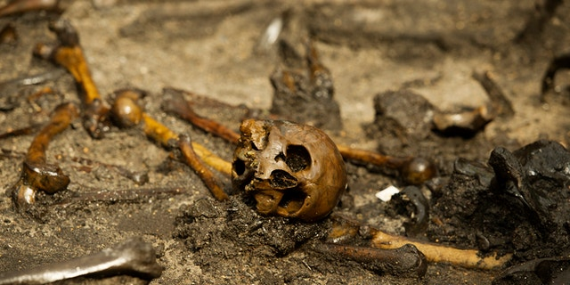 Researchers believe there are as many as 380 individuals buried at the site.
