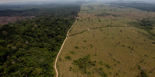 A deforested area near Novo Progresso in Brazil's northern state of Para from 2009.