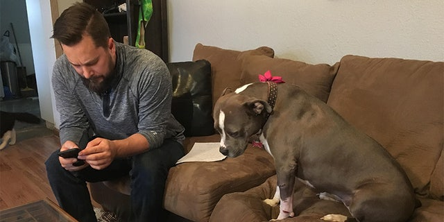 Hoffman's girlfriend ended up finding the dog on a rural road on Christmas Eve morning. Bridget was immediately taken to a clinic to be checked out.