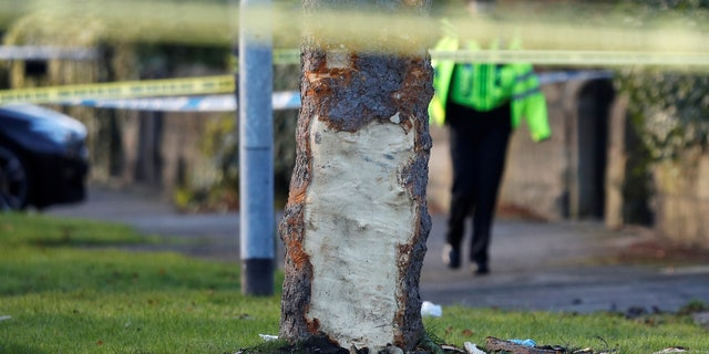 A police officer works next to a tree damaged when a stolen car crashed into it, leaving 5 people dead, including 3 children, in Leeds, Britain, November 26, 2017.