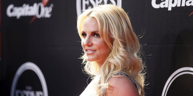Britney Spears has been battling Jamie and Lynne Spears for control of her finances for years.