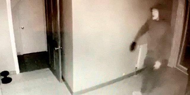 The burglar caught on camera raiding the couple's home.