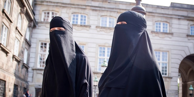 Denmark has joined some other European countries in banning garments that cover the face, including Islamic veils such as the niqab or burqa.